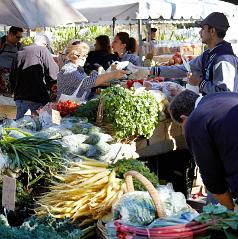 North Sydney Producce Market